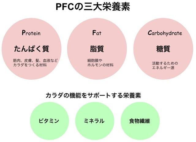 三大栄養素の概要